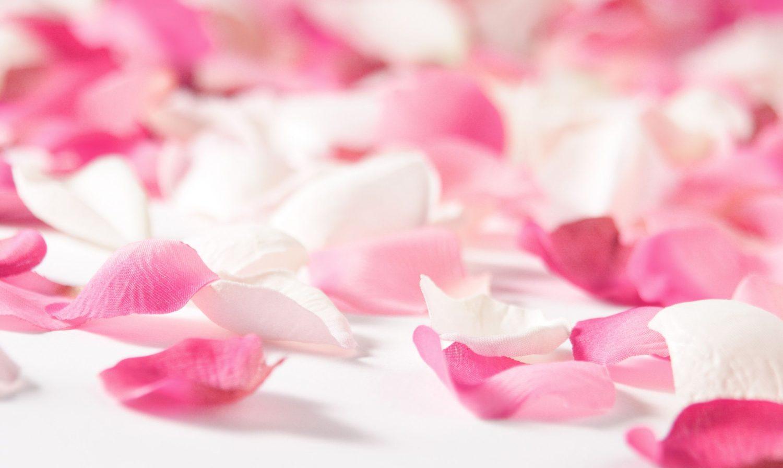 Les significations des fleurs à offrir à la Saint-Valentin