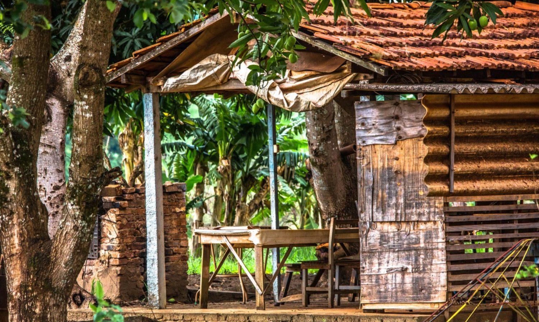 Quelques conseils pour bien aménager son abri de jardin ou chalet en bois