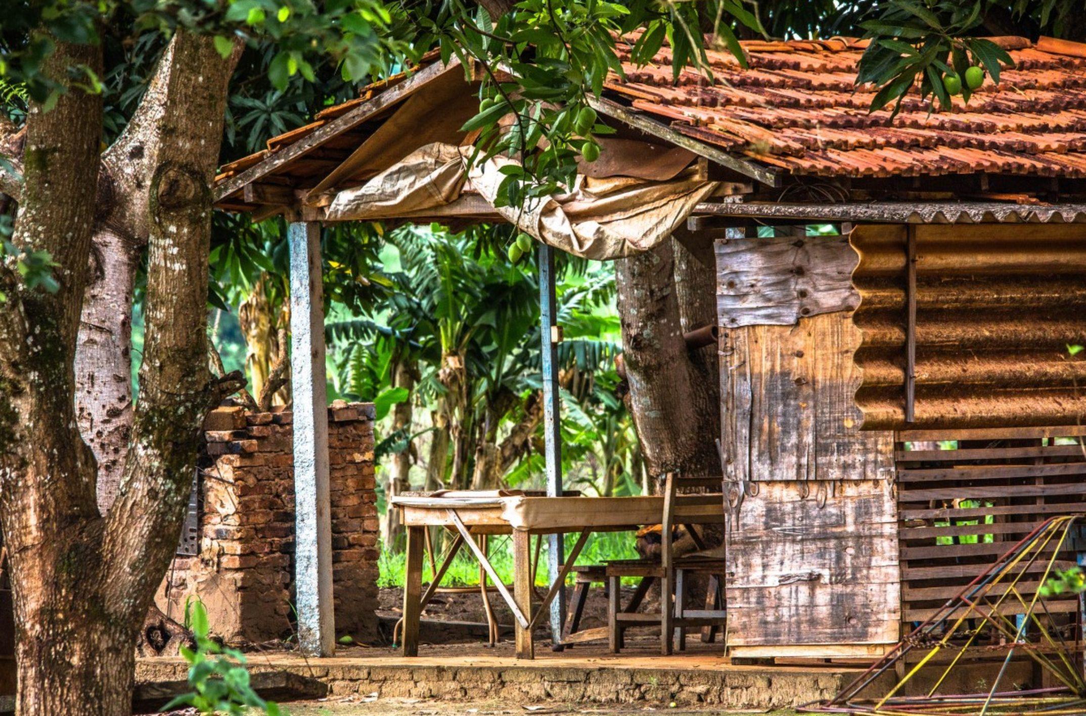 abri de jardin ou chalet en bois conseils. Black Bedroom Furniture Sets. Home Design Ideas